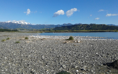 Braided rivers 7